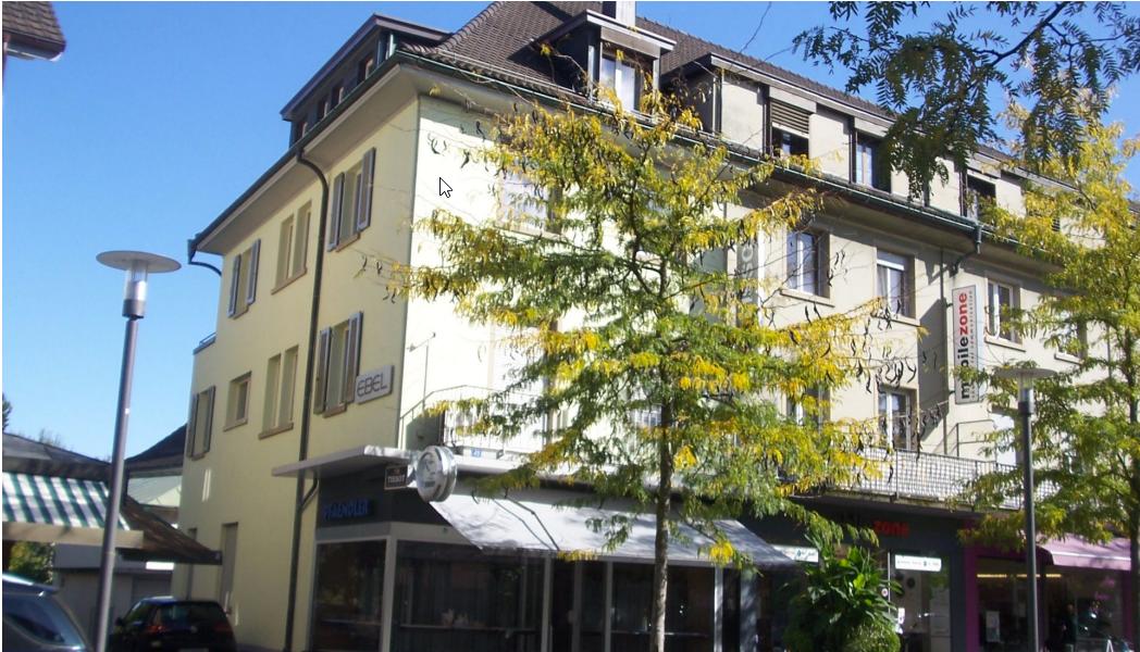 Vier kleine sanierte Altbau-Wohnungen am Boulevard: 500m nach Konstanz, 700m zum Bahnhof